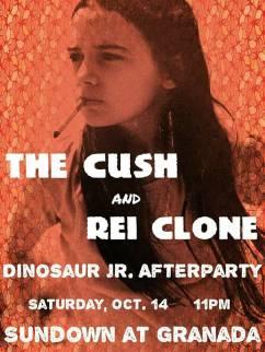 Dinosaur Jr. afterparty gig poster